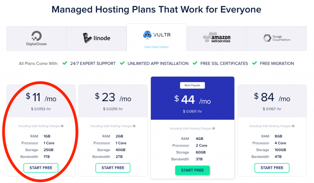 CloudWays $11 / month plan hosted on Vultr